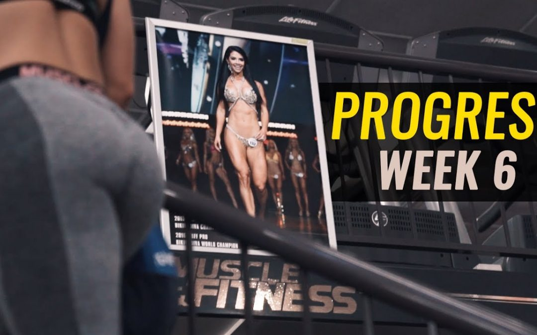 Focused – Rachel – Miss WBFF 6 Weeks Out